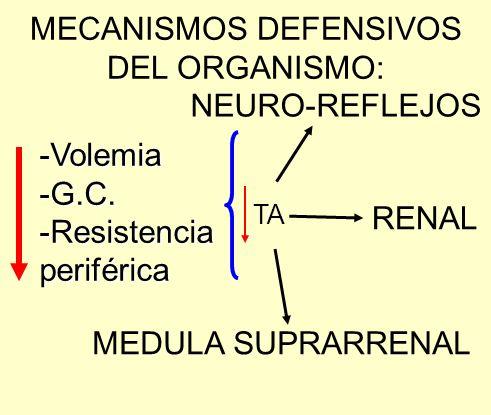 MECANISMOS DEFENSIVOS DEL ORGANISMO: