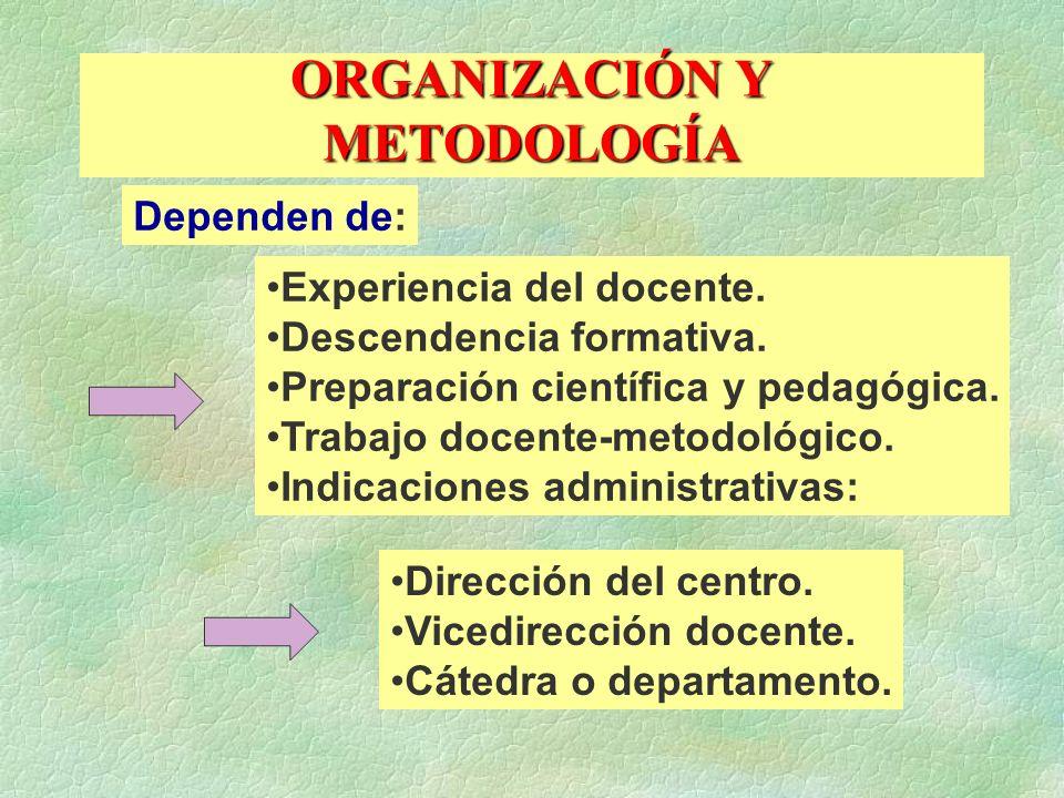 ORGANIZACIÓN Y METODOLOGÍA