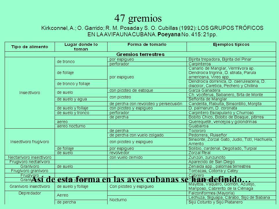 47 gremios Así de esta forma en las aves cubanas se han definido…