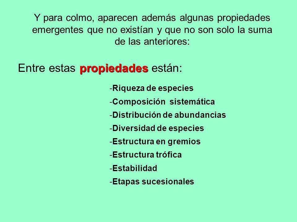 Entre estas propiedades están: