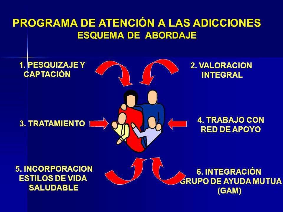 PROGRAMA DE ATENCIÓN A LAS ADICCIONES