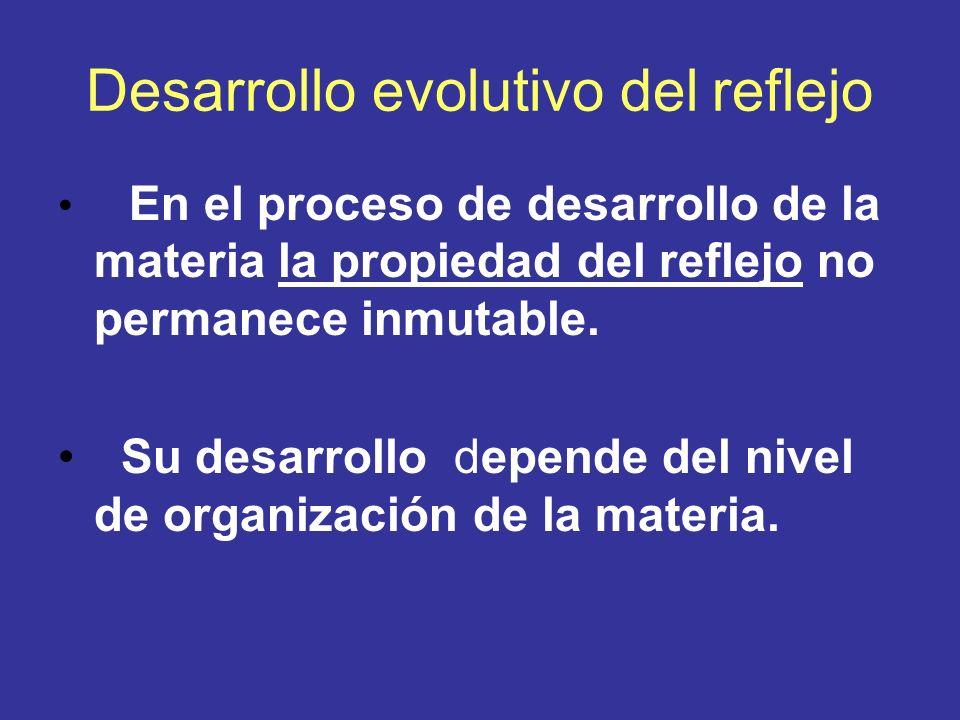 Desarrollo evolutivo del reflejo