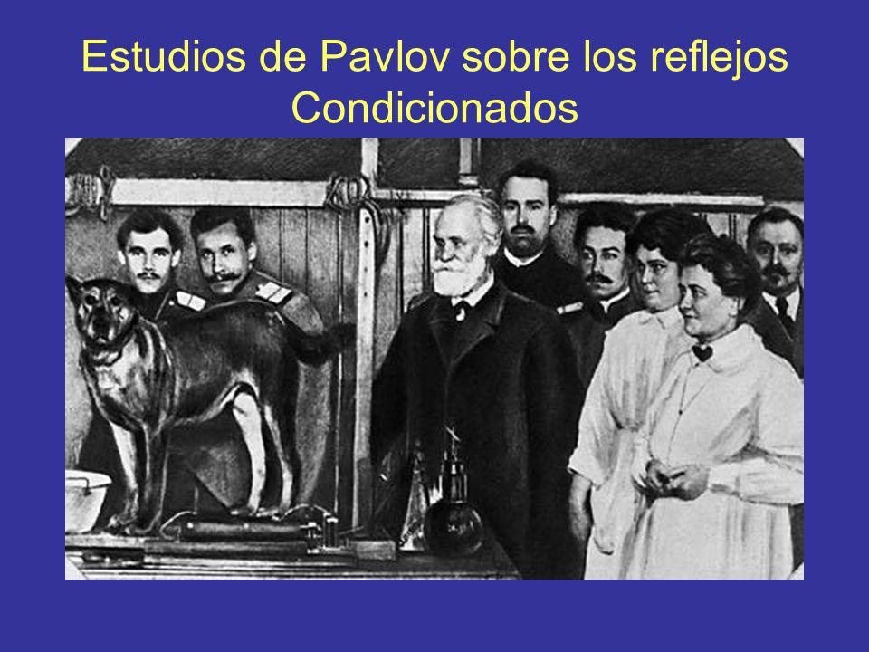 Estudios de Pavlov sobre los reflejos Condicionados