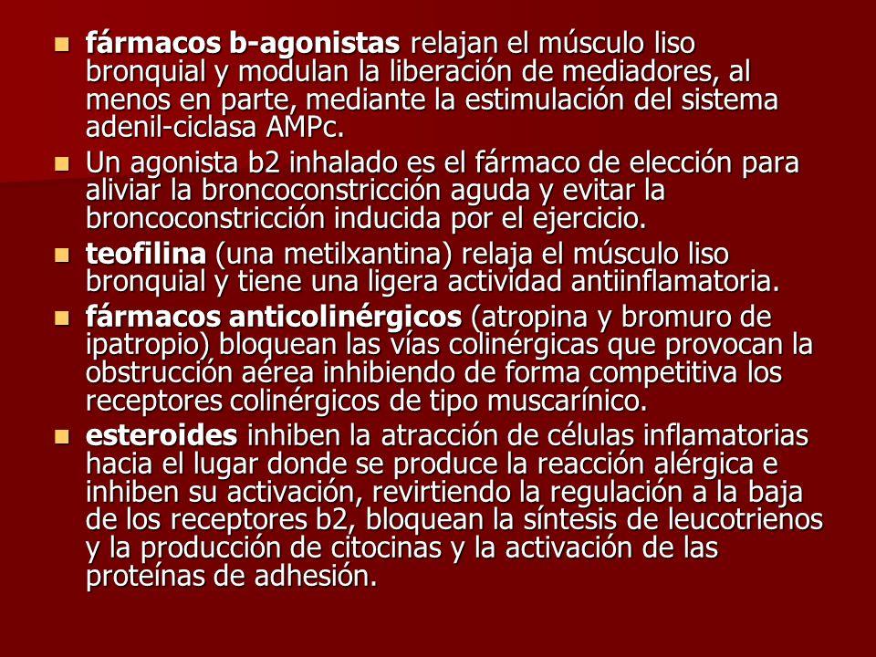fármacos b-agonistas relajan el músculo liso bronquial y modulan la liberación de mediadores, al menos en parte, mediante la estimulación del sistema adenil-ciclasa AMPc.