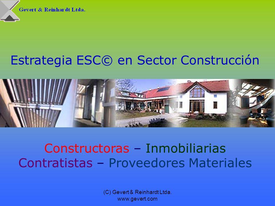 Estrategia ESC© en Sector Construcción