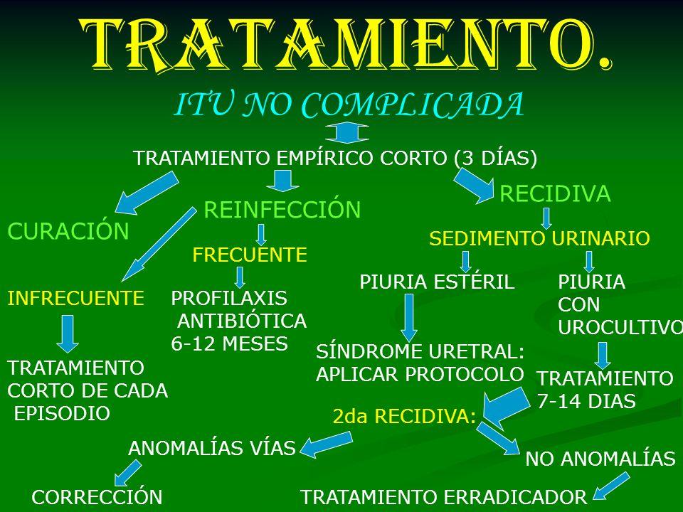 TRATAMIENTO. ITU NO COMPLICADA RECIDIVA REINFECCIÓN CURACIÓN