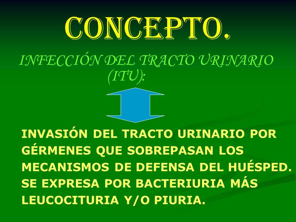 CONCEPTO. INFECCIÓN DEL TRACTO URINARIO (ITU):
