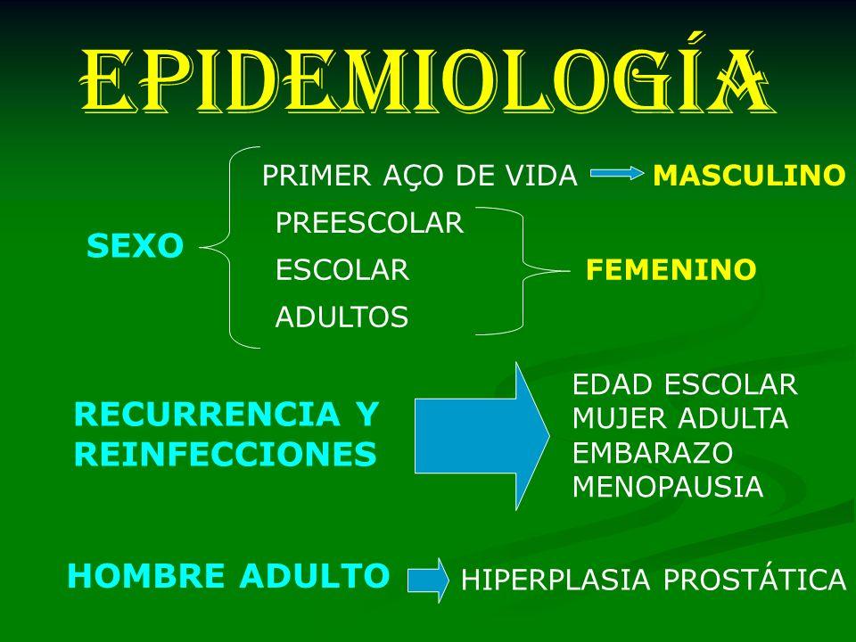 EPIDEMIOLOGÍA SEXO RECURRENCIA Y REINFECCIONES HOMBRE ADULTO