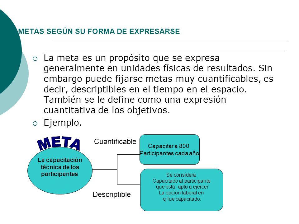 METAS SEGÚN SU FORMA DE EXPRESARSE
