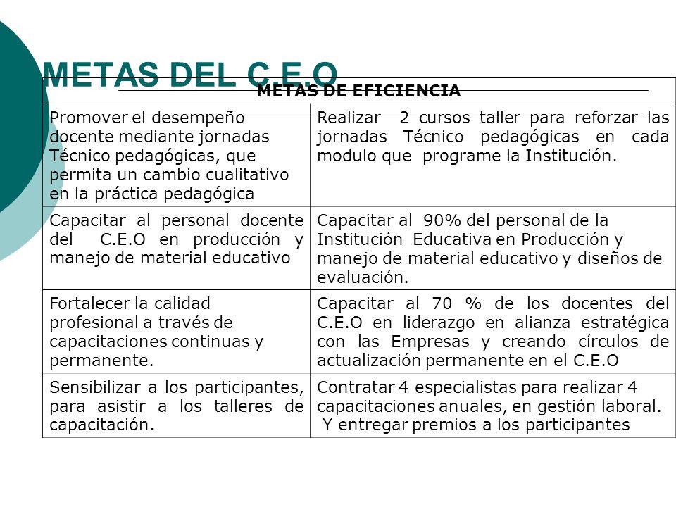 METAS DEL C.E.O METAS DE EFICIENCIA