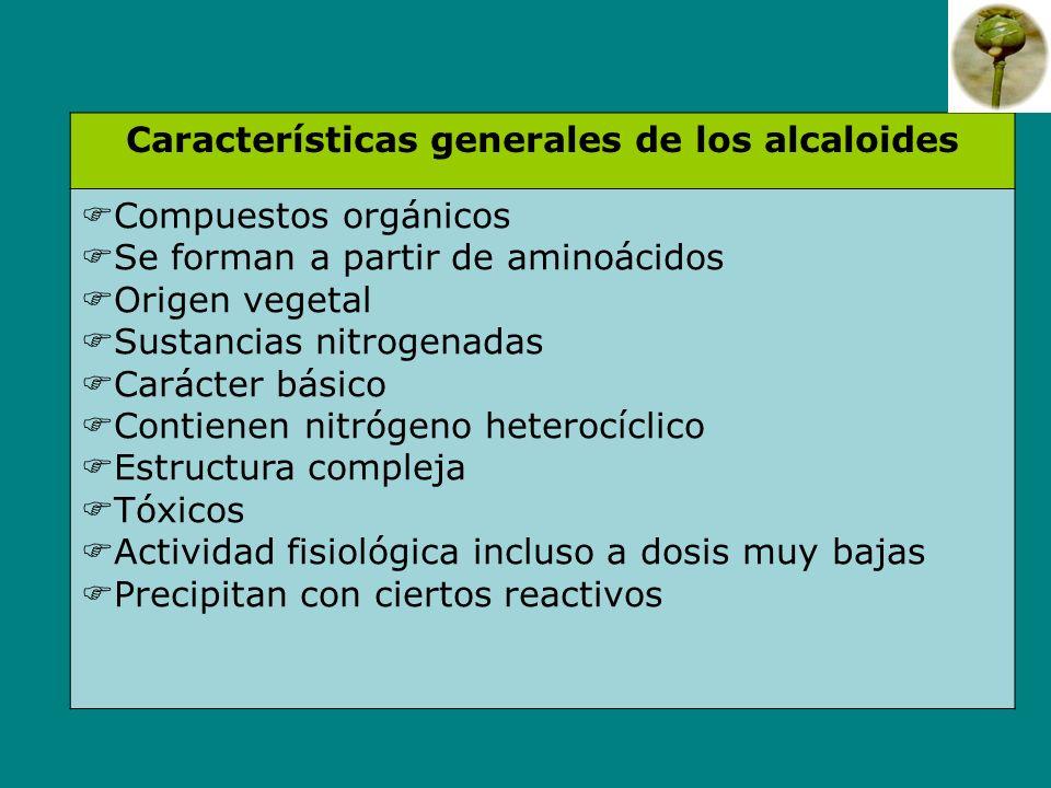 Características generales de los alcaloides