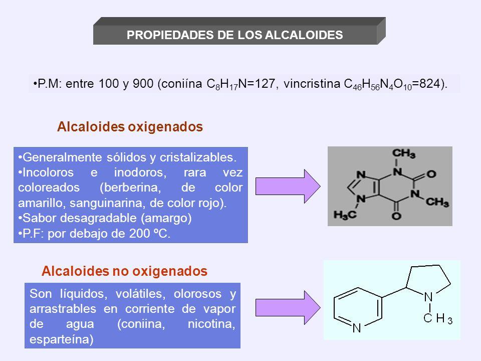 Alcaloides oxigenados Alcaloides no oxigenados