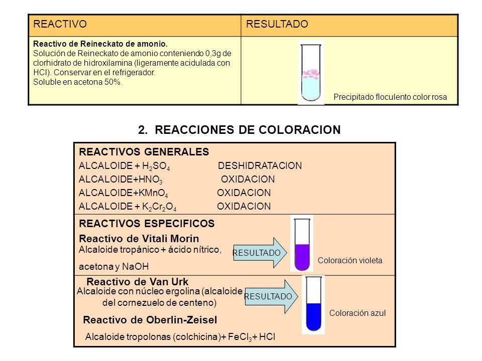 2. REACCIONES DE COLORACION