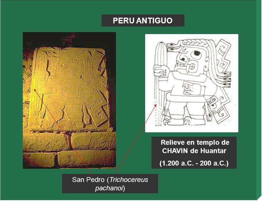 Relieve en templo de CHAVIN de Huantar