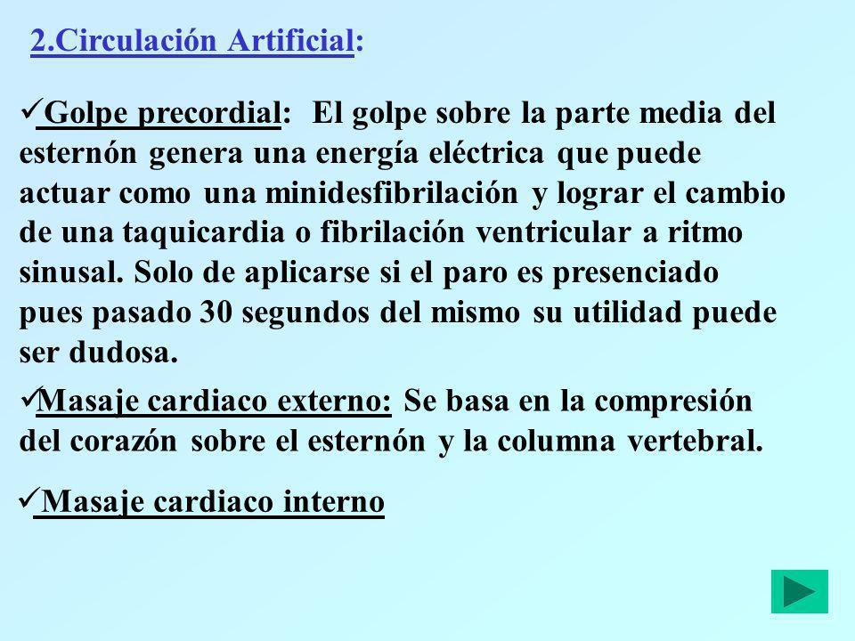 2.Circulación Artificial: