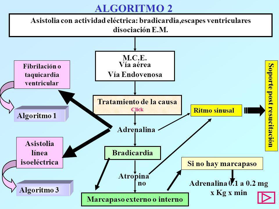 ALGORITMO 2Asistolia con actividad eléctrica: bradicardia,escapes ventriculares disociación E.M. M.C.E.