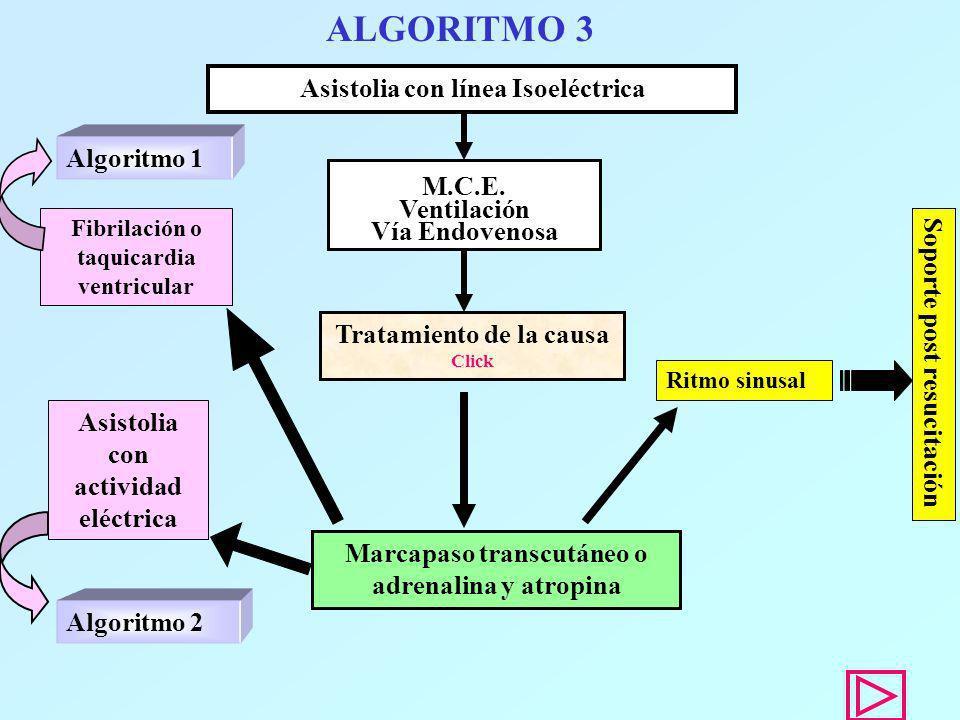 ALGORITMO 3 Asistolia con línea Isoeléctrica Algoritmo 1 M.C.E.