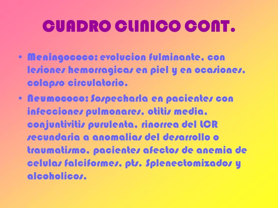 CUADRO CLINICO CONT. Meningococo: evolucion fulminante, con lesiones hemorragicas en piel y en ocasiones, colapso circulatorio.