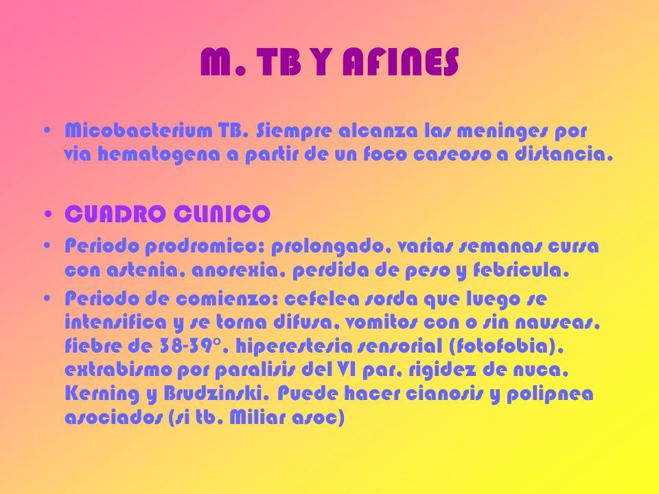 M. TB Y AFINES CUADRO CLINICO