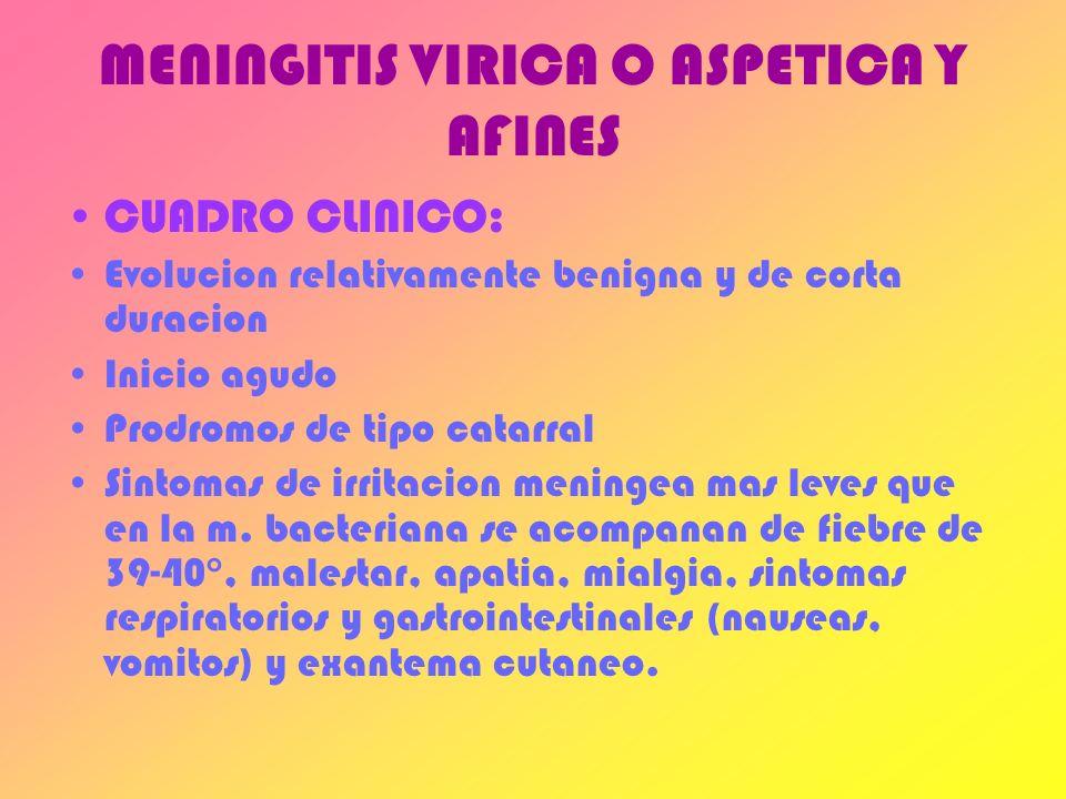 MENINGITIS VIRICA O ASPETICA Y AFINES