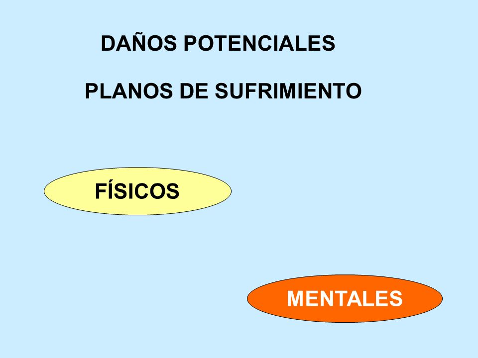 DAÑOS POTENCIALES PLANOS DE SUFRIMIENTO FÍSICOS MENTALES