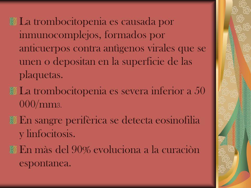 La trombocitopenia es causada por inmunocomplejos, formados por anticuerpos contra antìgenos virales que se unen o depositan en la superficie de las plaquetas.