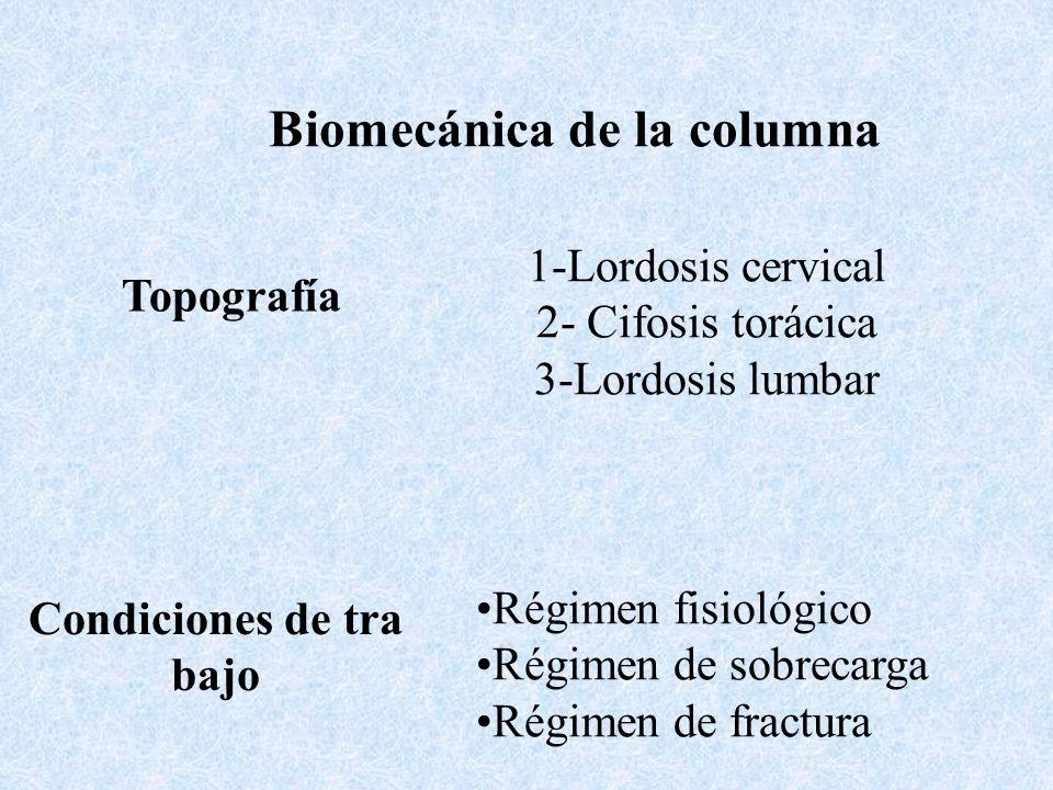 Biomecánica de la columna