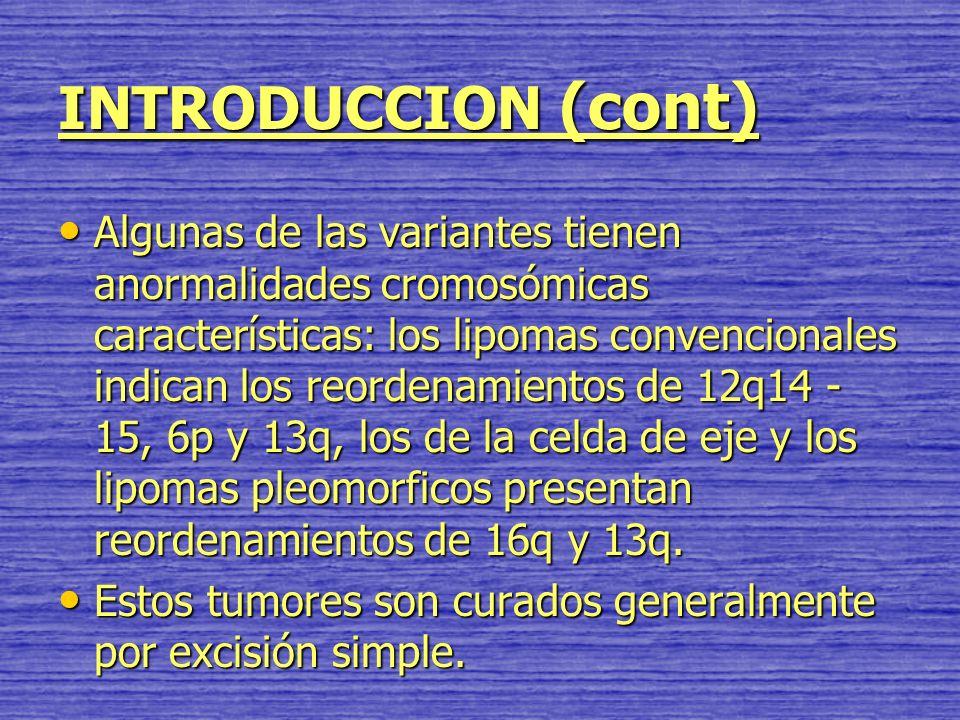 INTRODUCCION (cont)