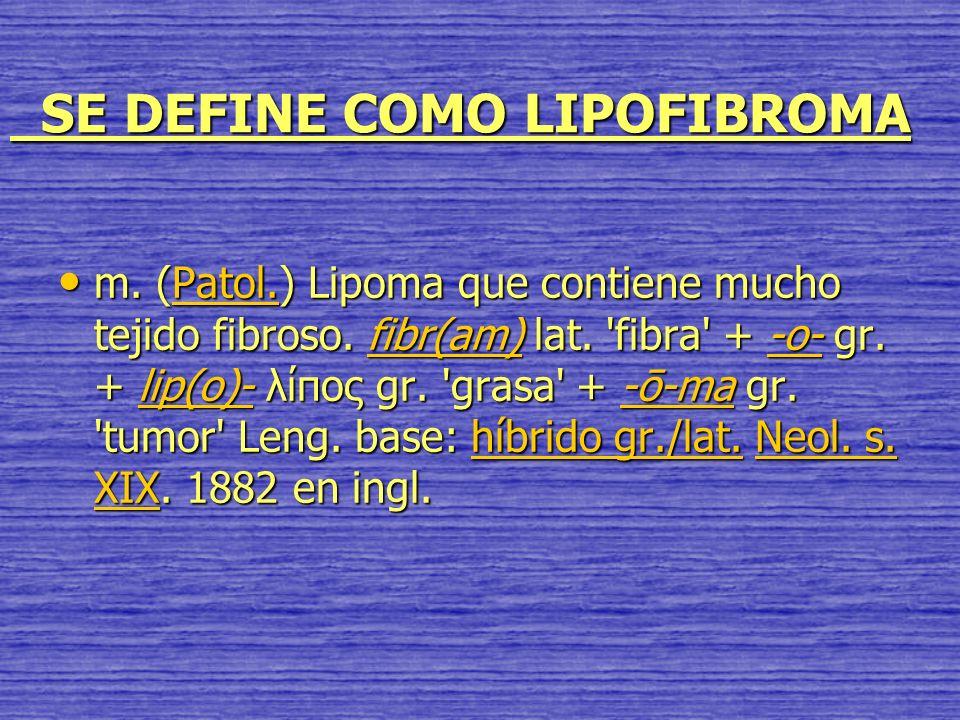 SE DEFINE COMO LIPOFIBROMA