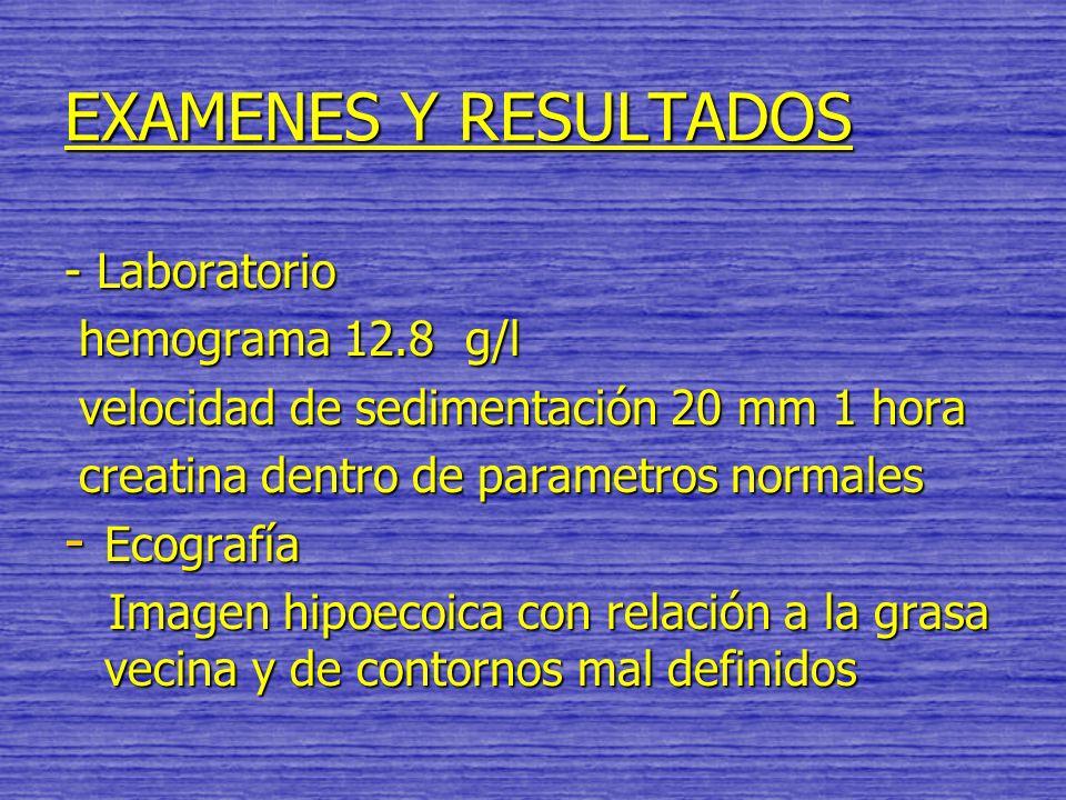EXAMENES Y RESULTADOS - Laboratorio hemograma 12.8 g/l