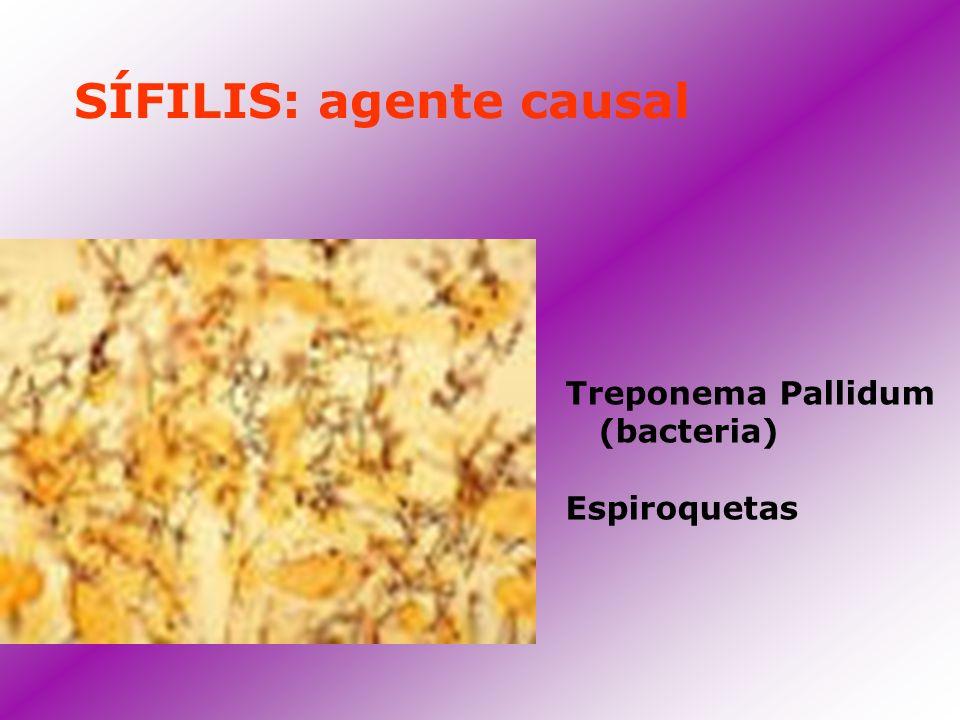 SÍFILIS: agente causal