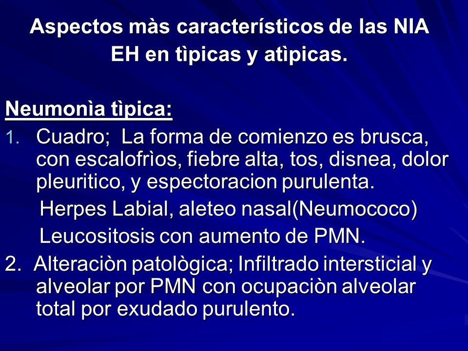 Aspectos màs característicos de las NIA EH en tìpicas y atìpicas.