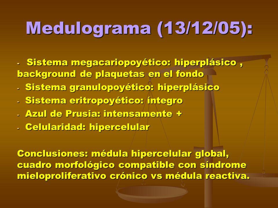 Medulograma (13/12/05): Sistema megacariopoyético: hiperplásico , background de plaquetas en el fondo.