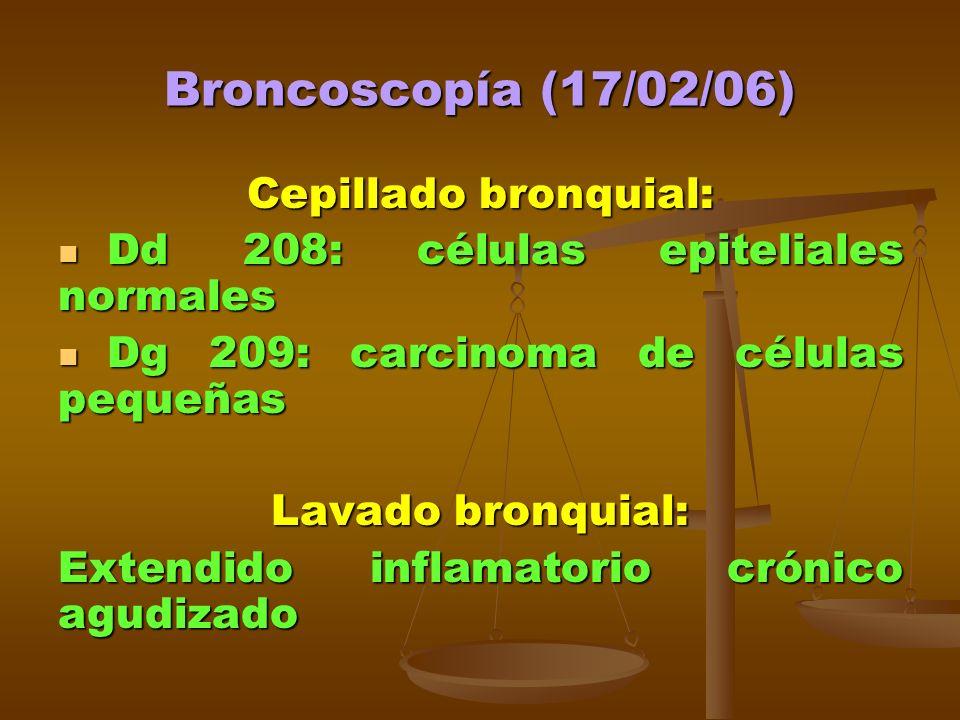 Broncoscopía (17/02/06) Cepillado bronquial: