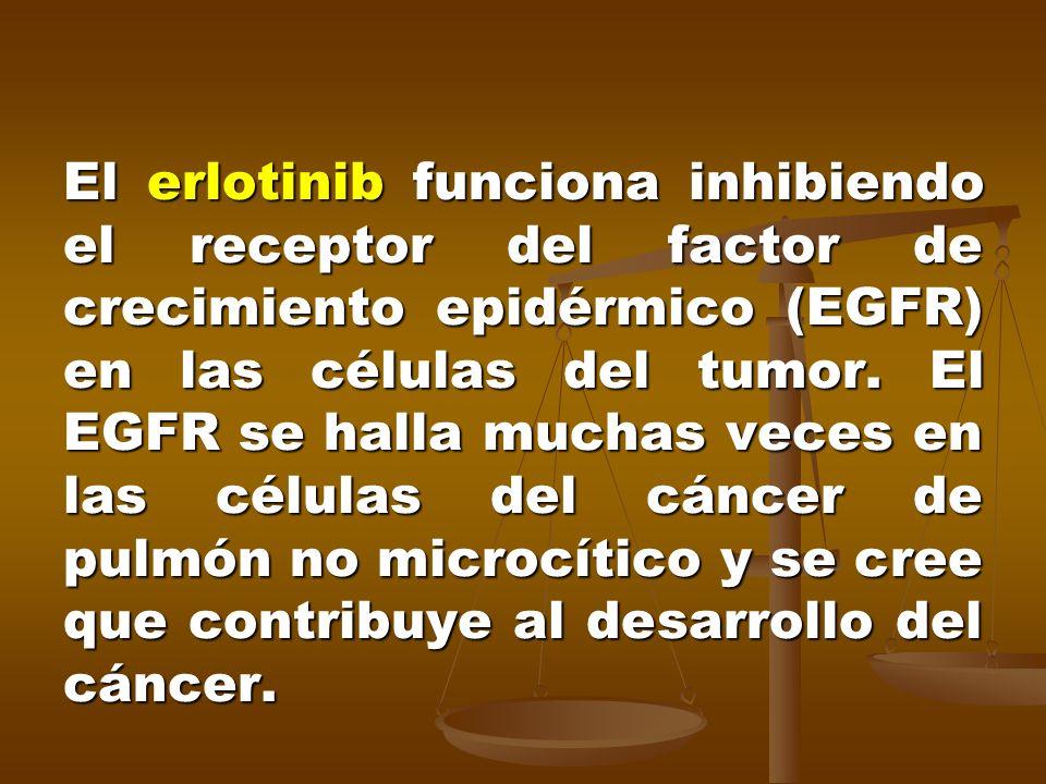 El erlotinib funciona inhibiendo el receptor del factor de crecimiento epidérmico (EGFR) en las células del tumor.