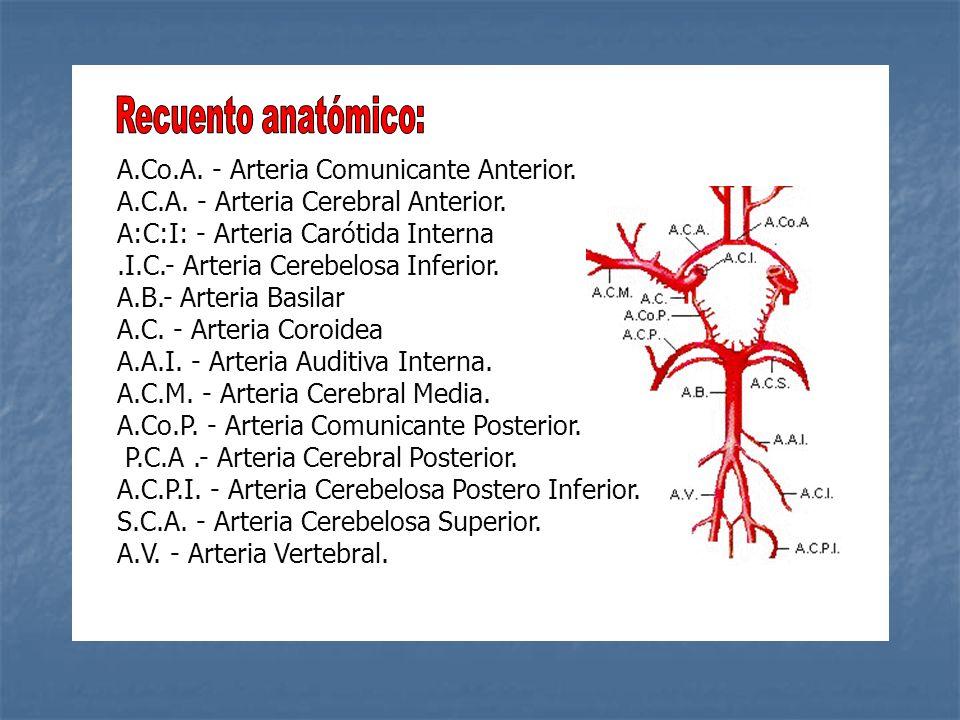 Recuento anatómico: A.Co.A. - Arteria Comunicante Anterior. A.C.A. - Arteria Cerebral Anterior. A:C:I: - Arteria Carótida Interna.