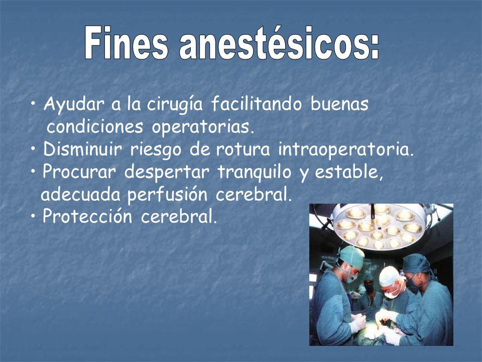 Fines anestésicos: Ayudar a la cirugía facilitando buenas