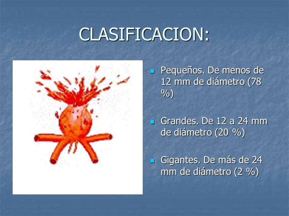 CLASIFICACION: Pequeños. De menos de 12 mm de diámetro (78 %)
