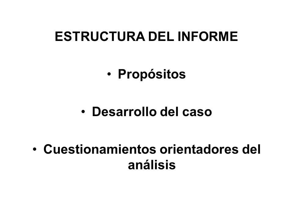 ESTRUCTURA DEL INFORME Cuestionamientos orientadores del análisis