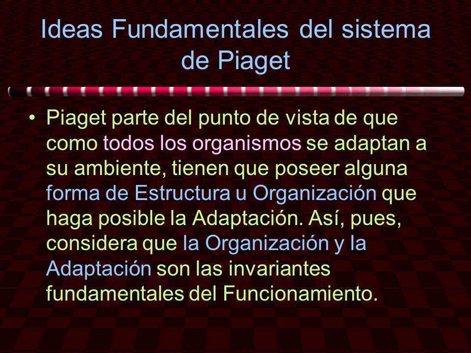 Ideas Fundamentales del sistema de Piaget