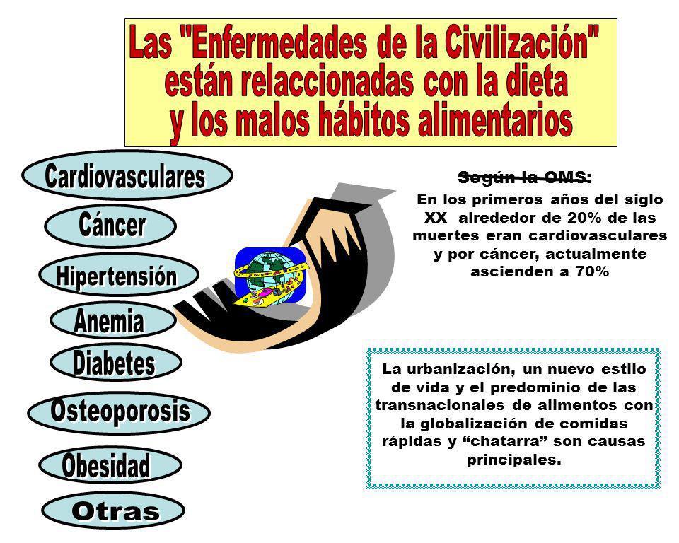 Las Enfermedades de la Civilización