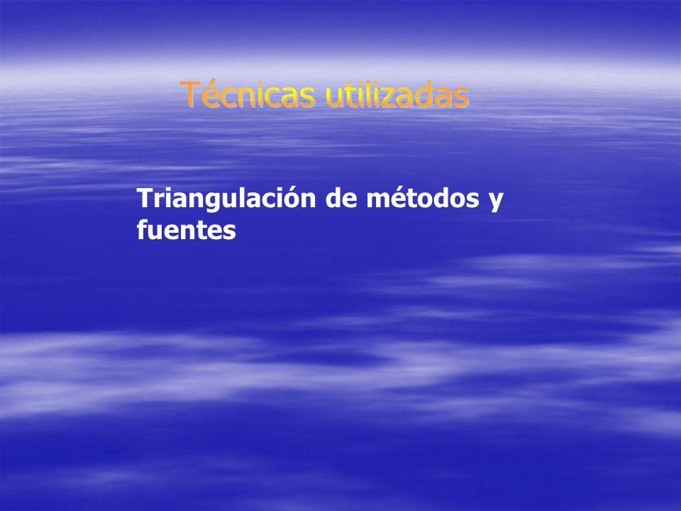 Triangulación de métodos y fuentes