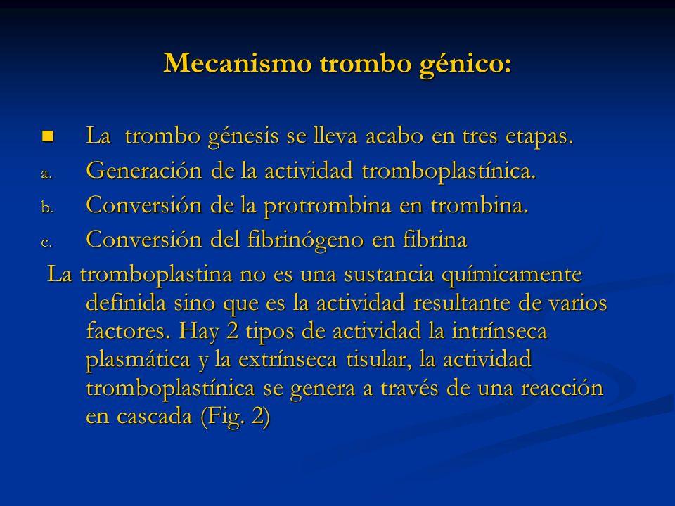 Mecanismo trombo génico: