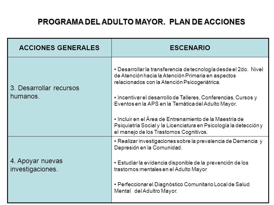 PROGRAMA DEL ADULTO MAYOR. PLAN DE ACCIONES