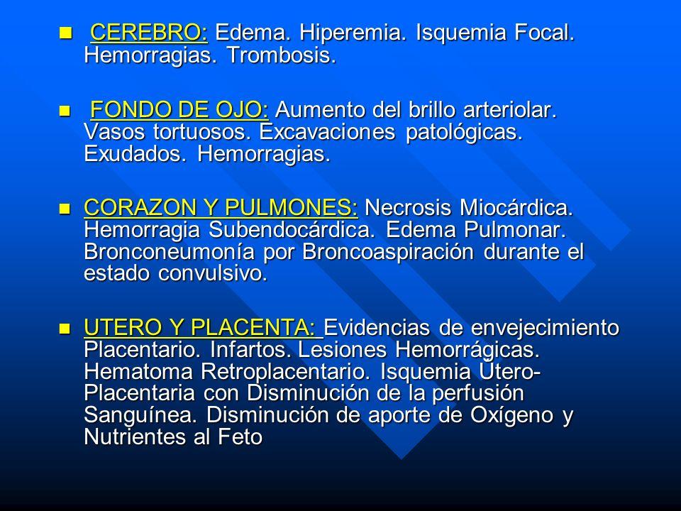 CEREBRO: Edema. Hiperemia. Isquemia Focal. Hemorragias. Trombosis.