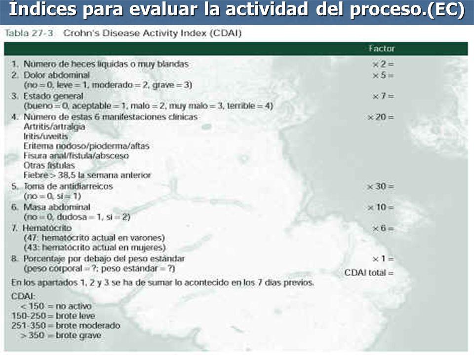 Índices para evaluar la actividad del proceso.(EC)