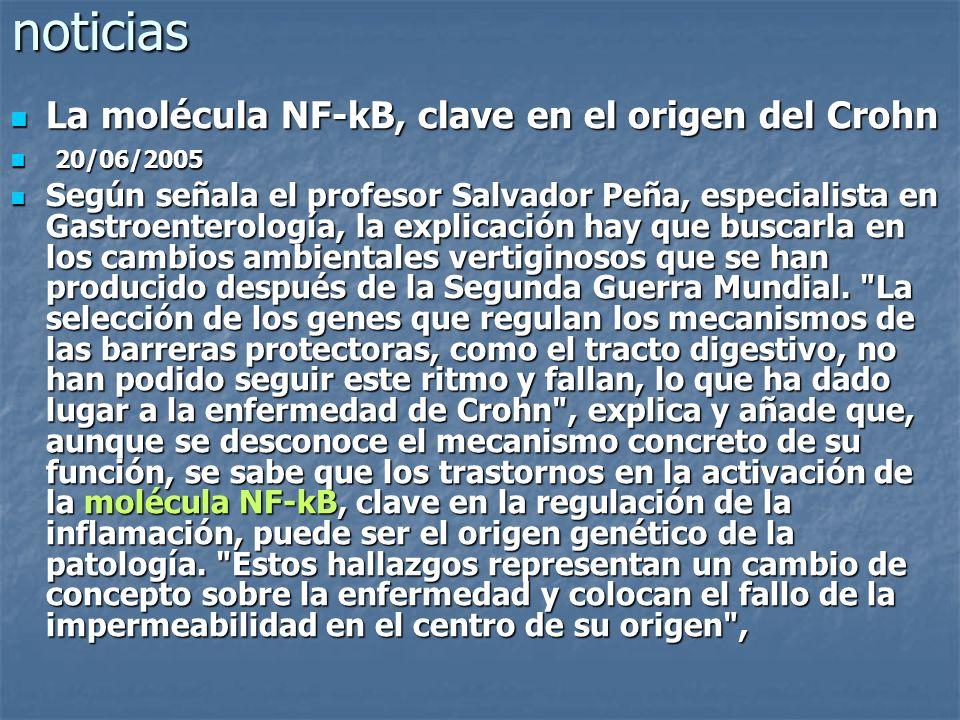 noticias La molécula NF-kB, clave en el origen del Crohn 20/06/2005