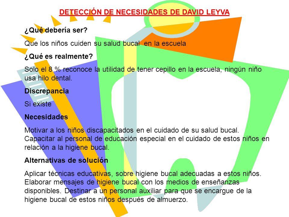 DETECCIÓN DE NECESIDADES DE DAVID LEYVA