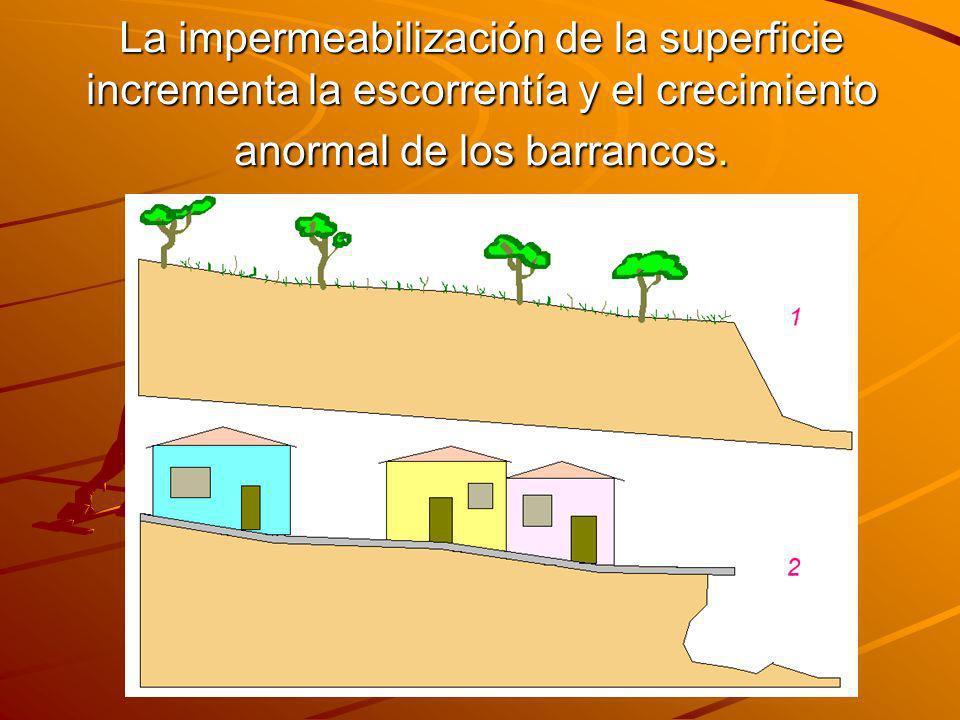 La impermeabilización de la superficie incrementa la escorrentía y el crecimiento anormal de los barrancos.