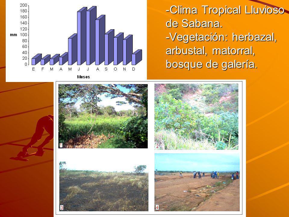 Clima Tropical Lluvioso de Sabana